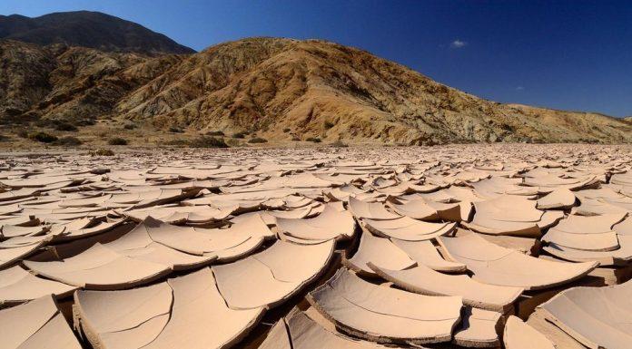 В пустыне Атакама
